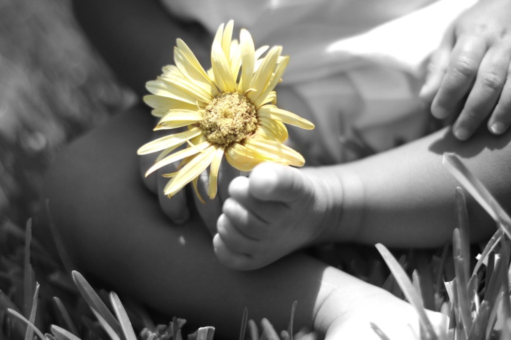 Baby foot w: yellow flower